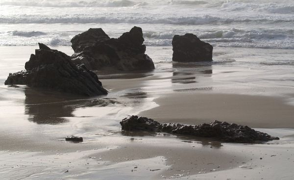 rocks in the beach