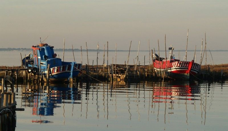 blue and red boats at Carrasqueira