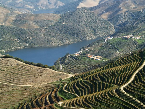 Douro river at Vargelas farm.