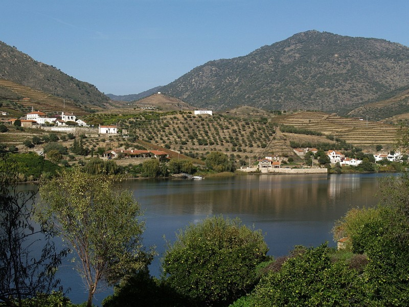 Senhora da Ribeira farm at Douro river