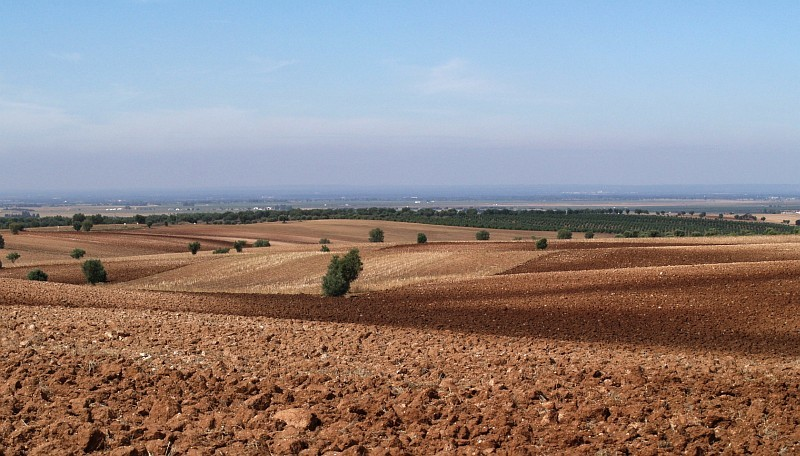 Ploughed fields at Alentejo