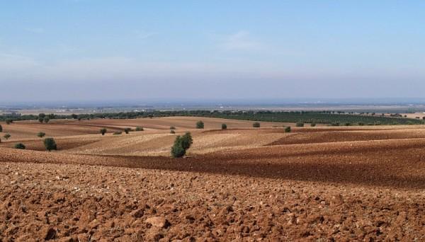 Ploughed fields at Alentejo