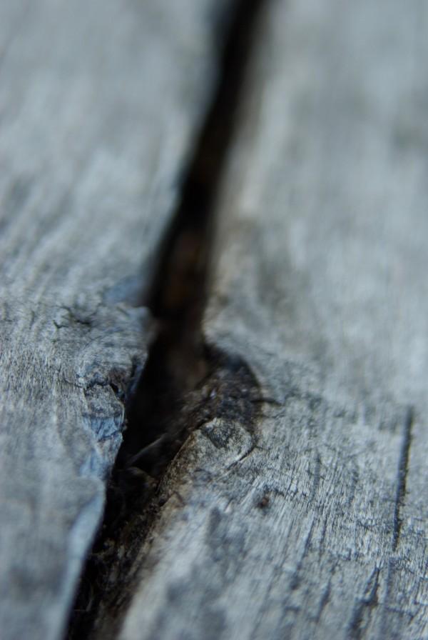 crack in wood