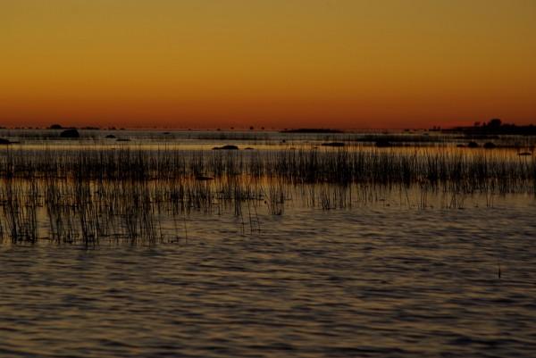 Sunset in Estonia