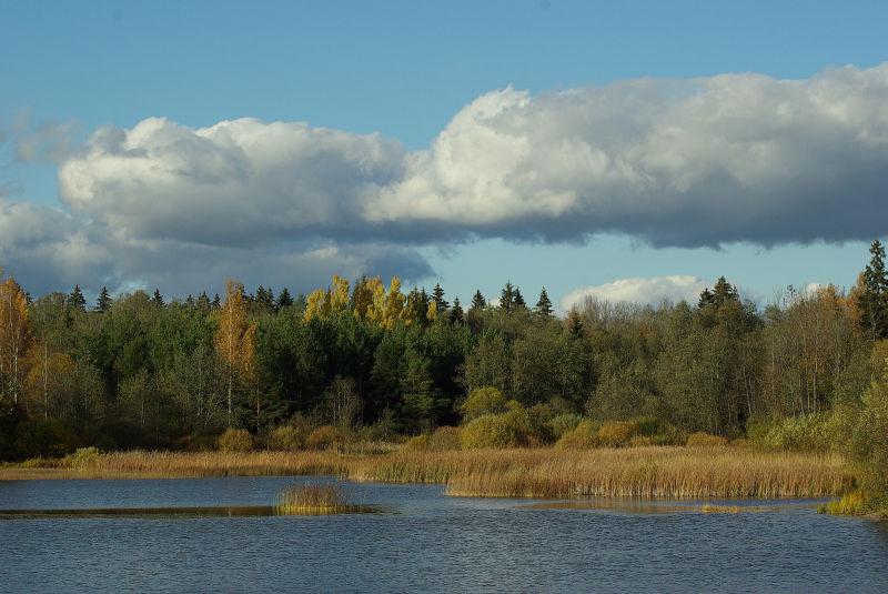 Estonian nature