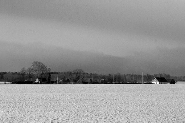winter landscape in Järvamaa