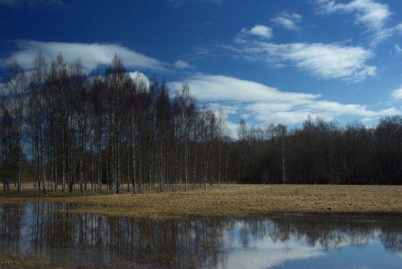 Järvamaa landscape, Türi-Alliku
