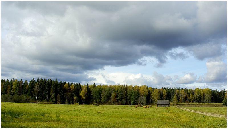 Landscape view in Järvamaa, Kurgja