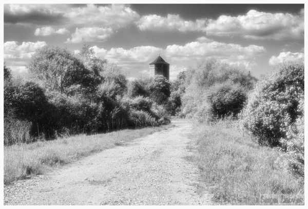 infrared image of the road going to Paide, Estonia