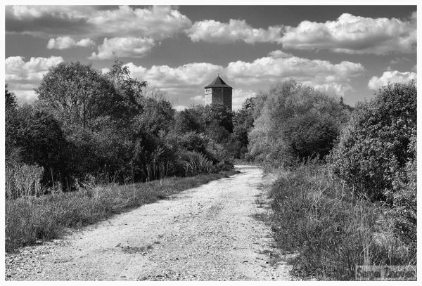 b&w image of the road going to Paide, Estonia