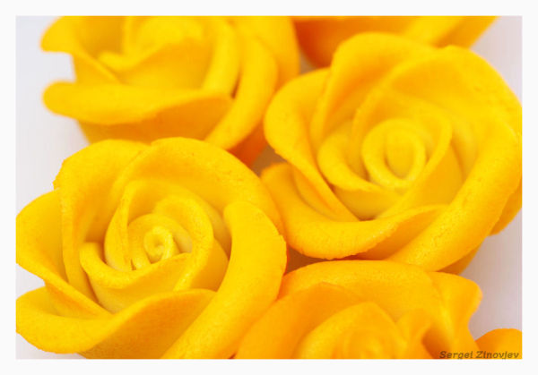 close-up of yellow marzipan roses