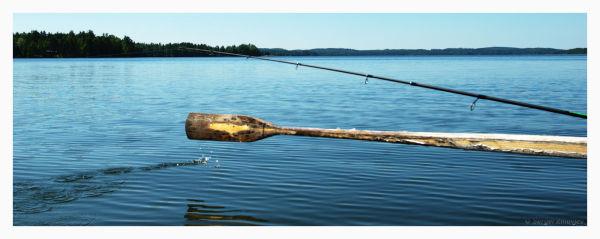 fishing at sunny day