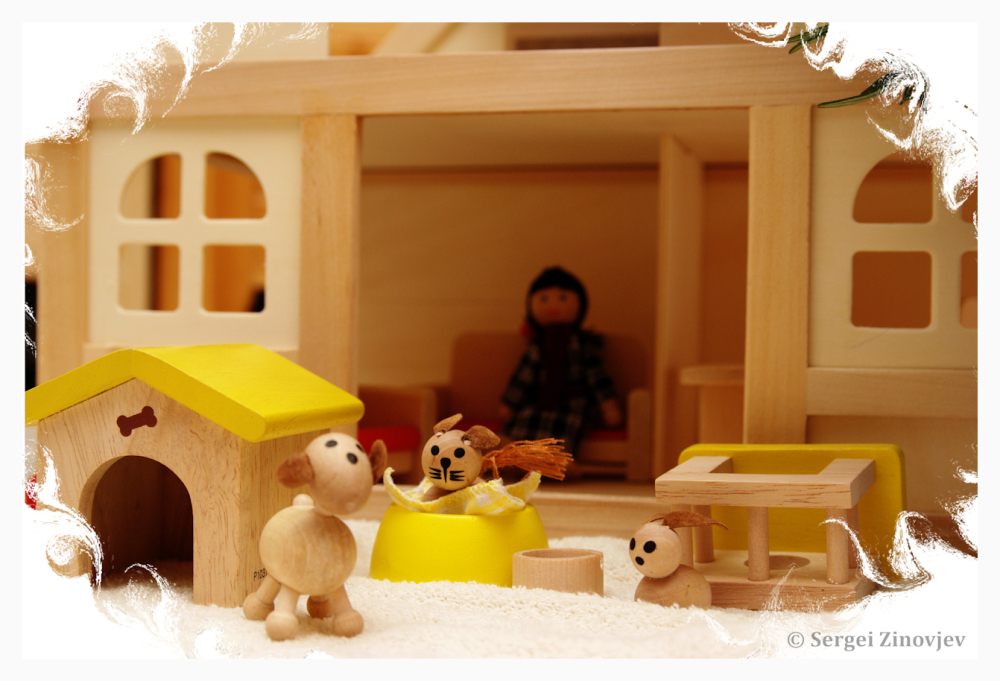 little toy pets in front of the dollhouse