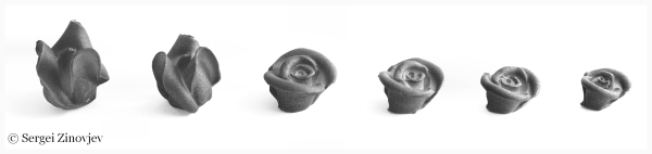 Different shapes of marzipan roses.