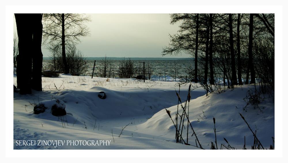 Baltic Sea shore in winter