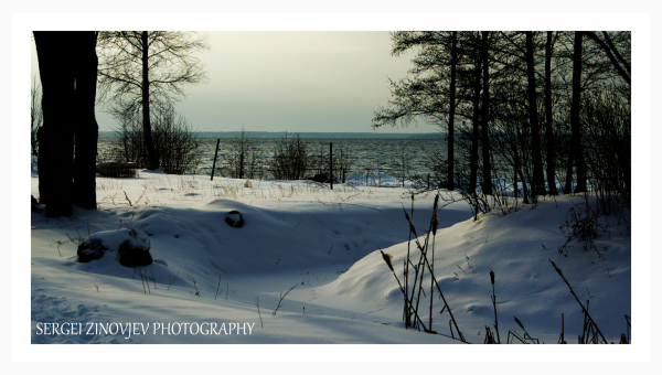 Baltic Sea shore in winter