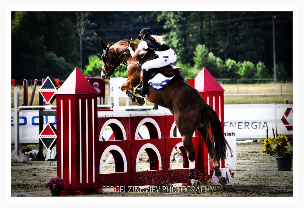horse jump on competition