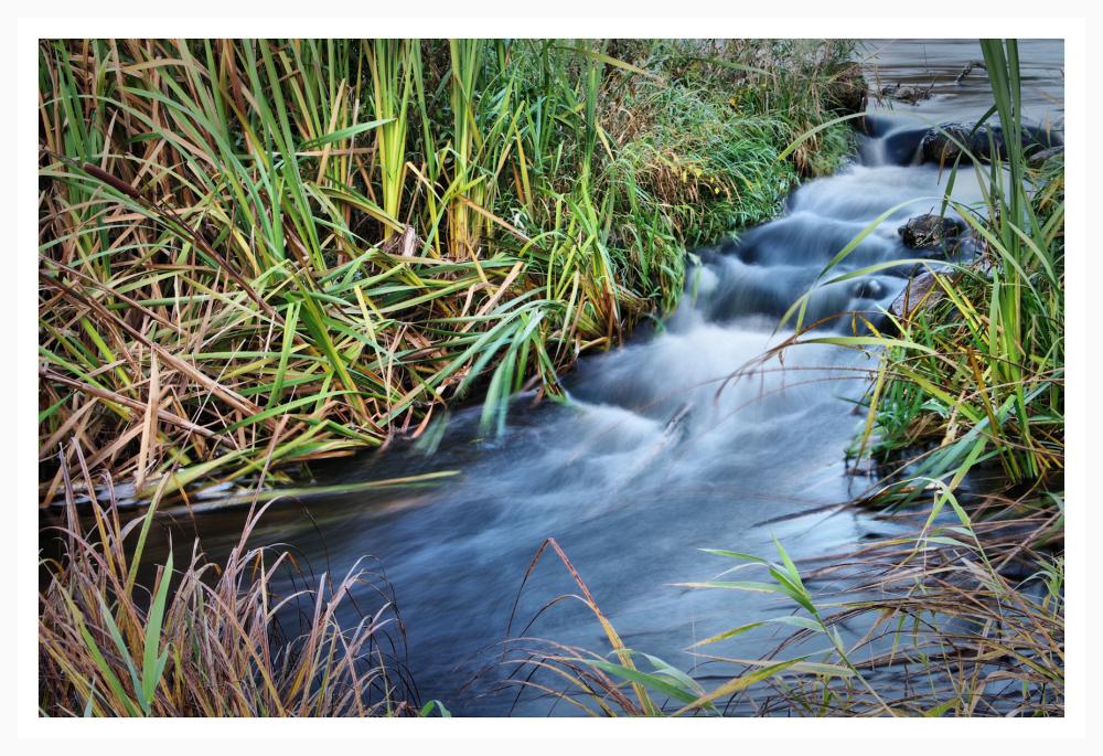stream of river