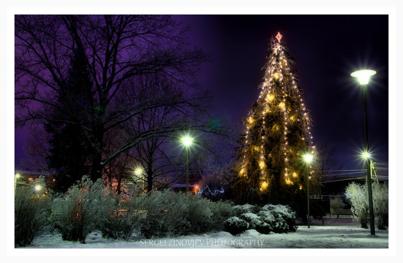 Christmas tree in Türi, Estonia