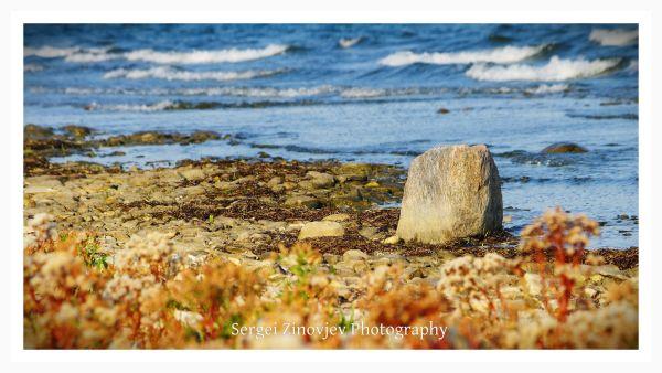 beautiful day at Baltic Sea shore