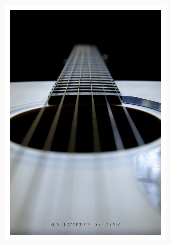 close-up of strings of guitar