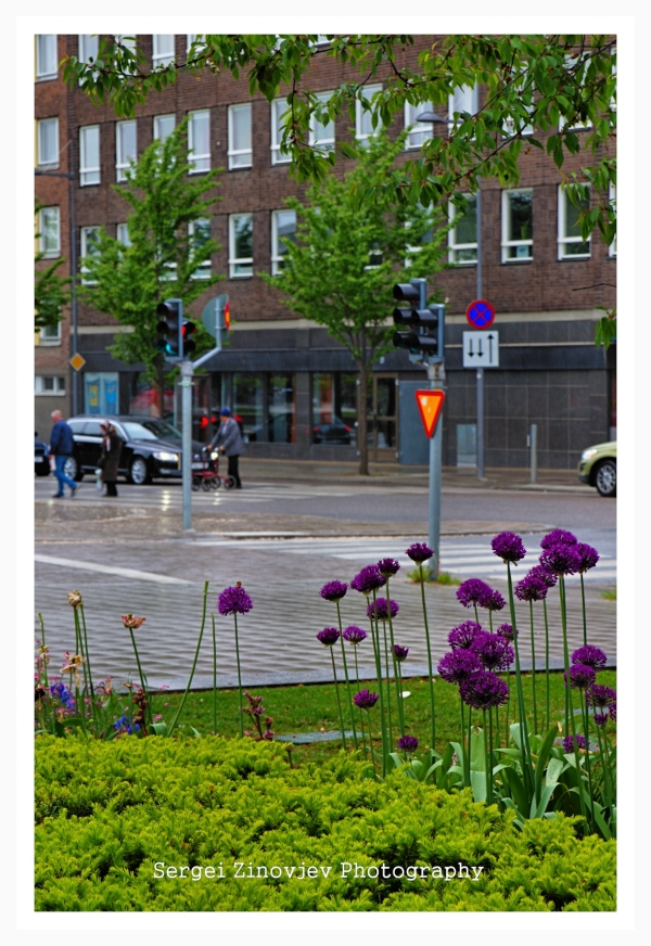 street life of Uppsala