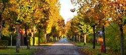 Beautiful and colorful autumn in Türi, Estonia