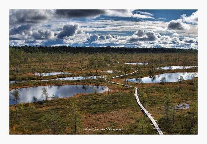 beautiful landscape, Estonian nature, Murki Raba