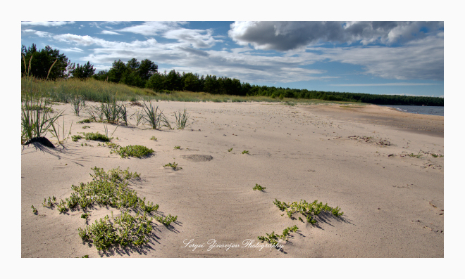 empty beach on Naissaar island, Estonia