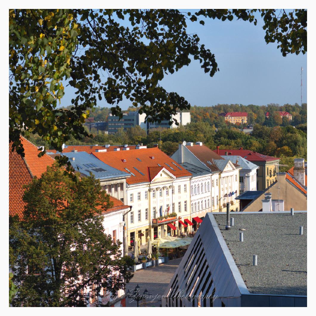 sunny day in Tartu