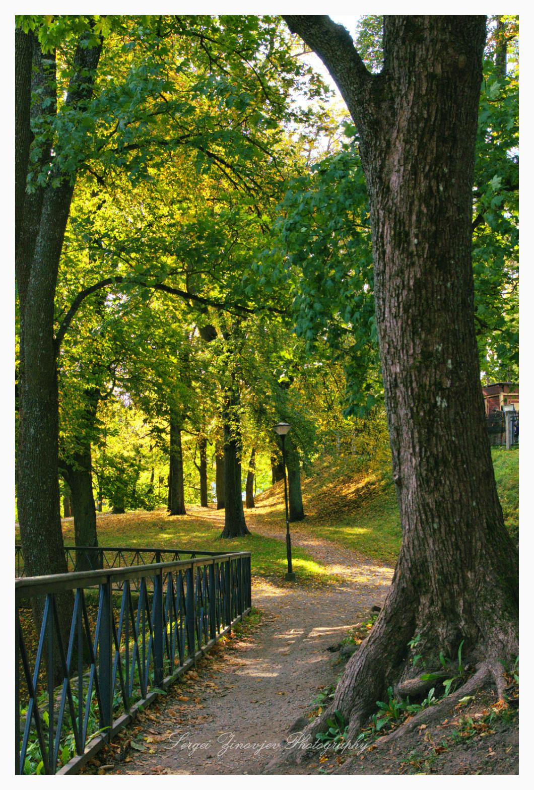 colorful autumn park in Tartu