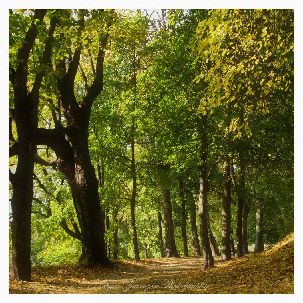 relaxing walk in Tartu