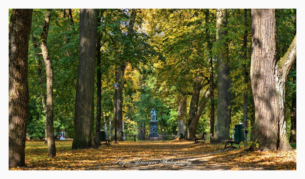 walking in the Tartu park