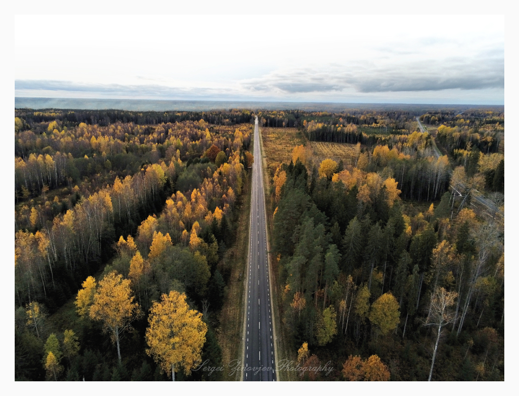 drone view of road though autumn forest