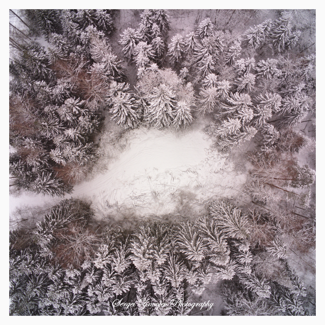 drone view of winter forest