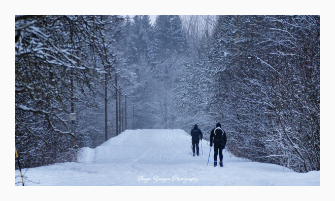 two person skiing in winter forest