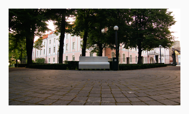 bench in Toompea, Tallinn