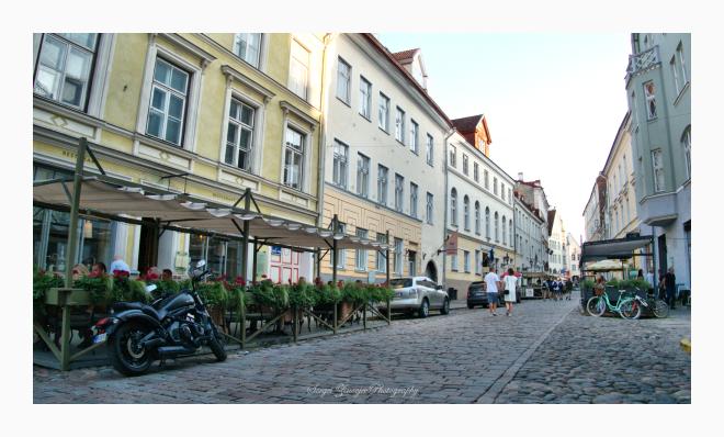 Old Town street of Tallinn in summer