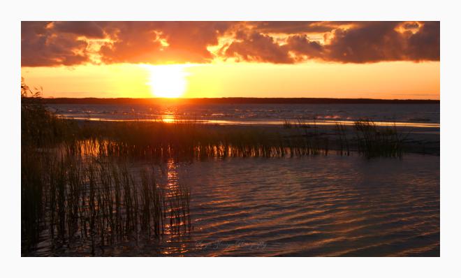 golden sunset in Estonia