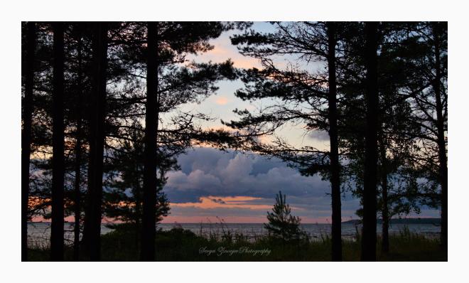 sunset in Northern Estonia