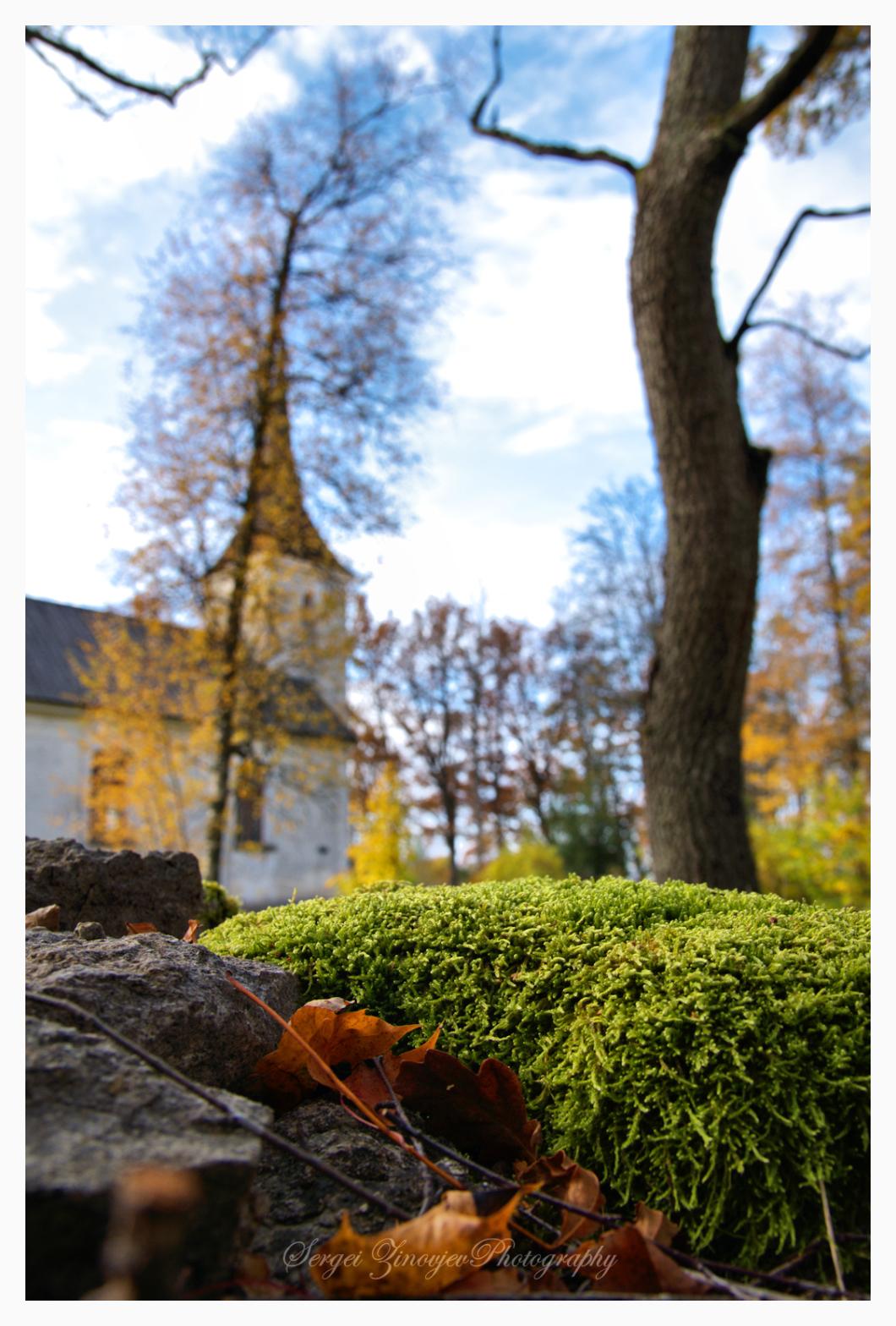 Autumn in Anna parish