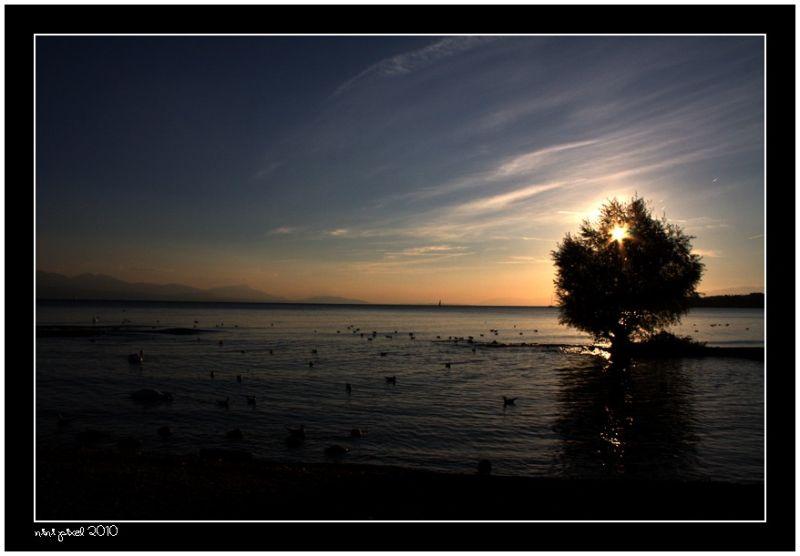 Sunset on the Leman Lake