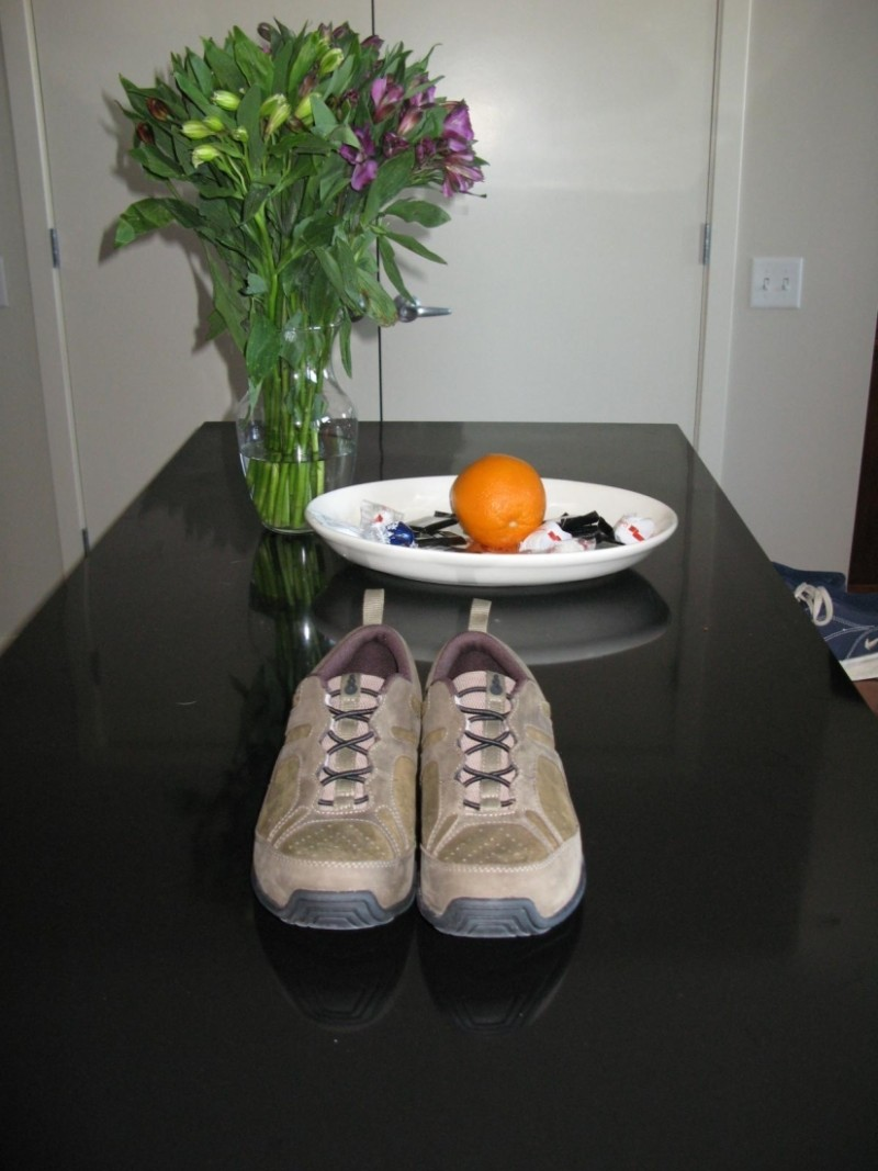 A new pair of sneakers and flowers on the table.