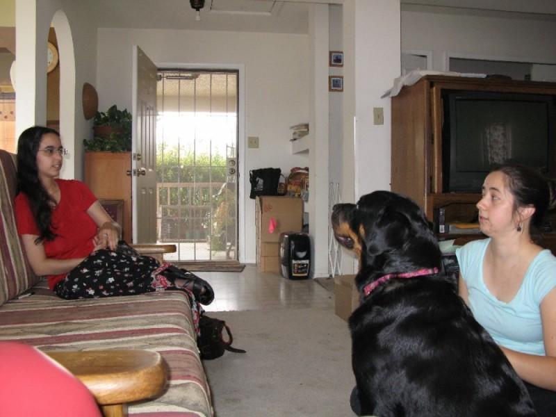 Maria, Maria and a dog