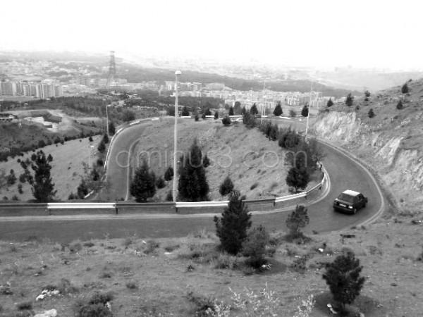 Circle Road