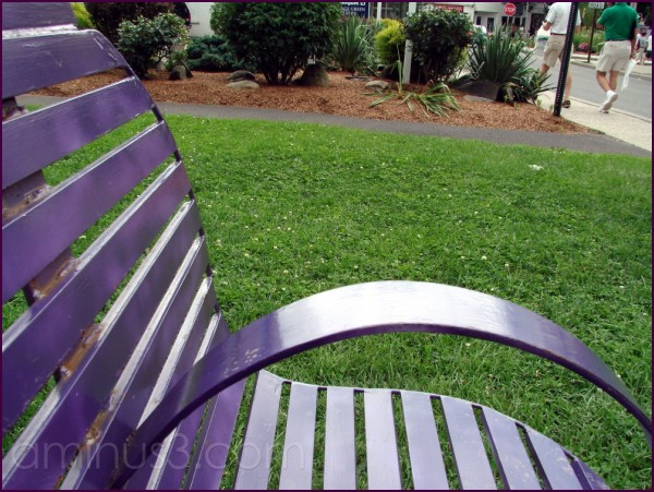Purple bench in Woodstock