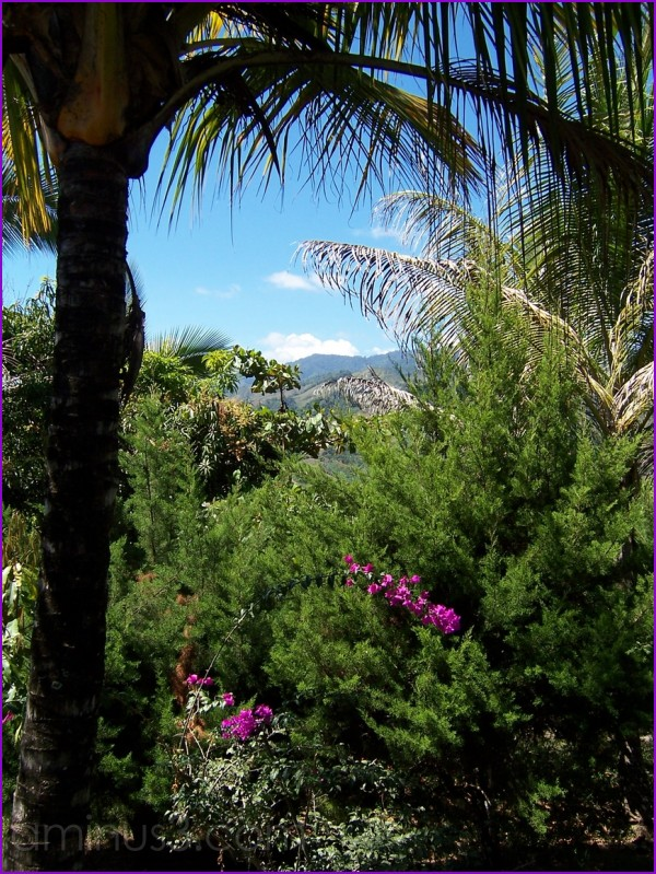 View from property in Villanueva de Pedregoso, CR