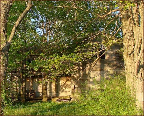 Abandoned house in the Spring