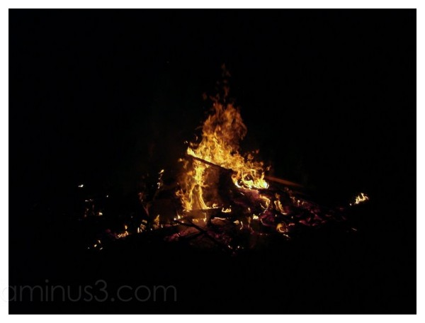 Bonfire at Fuller's