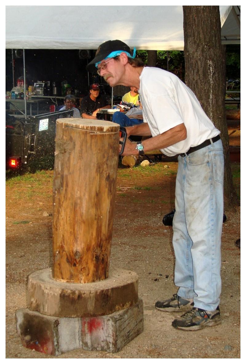 White pine log